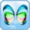 Schmetterlingflügel