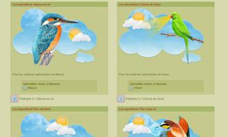 Birdrama - Die vogelausstellungen